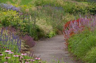 Jardins-naturalistes_Wisley